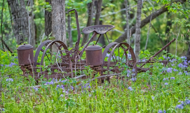 One of a few abandoned farm implements on my farm.   Click on image for higher resolution copy.