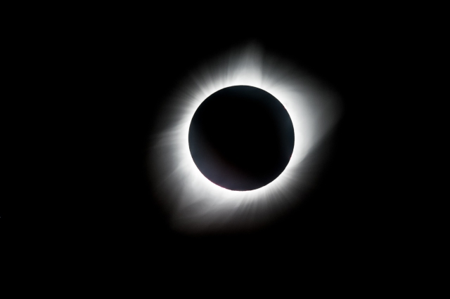 eclipse big bloom 0335-Edit